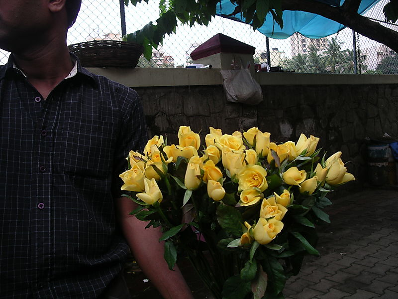 Mumbai rains 2008 015